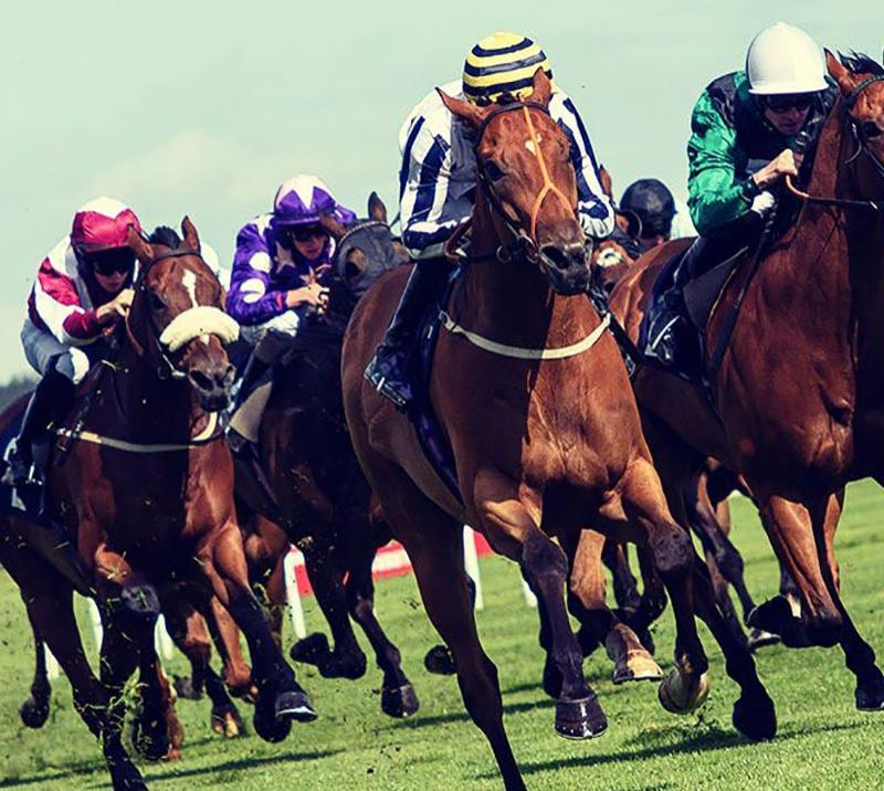 Horses racing at Doncaster Racecourse
